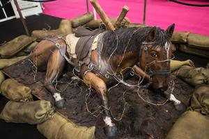 The movie theme continued thanks to this War Horse cake (Aaron Chown/PA)