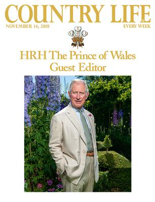 The Prince of Wales on the front cover of Country Life magazine, which he has guest edited to mark his 70th birthday (John Paul/Country Life/PA)