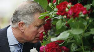 The Prince of Wales has recorded a video message in support of the National Garden Scheme (Sang Tan/PA)