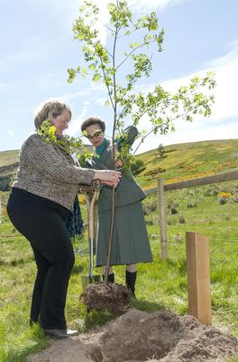 The Princess Royal planted a rowan tree as she officially opened Scotland's First World War Centenary Wood in 2015 (Jane Barlow/Scotsman/PA)