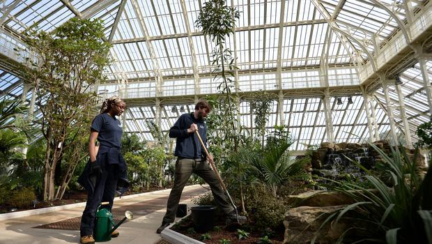 Lead horticulturalist Scott Taylor plants the final plant during the reopening of the Temperate House at Kew Gardens in Kew (Kirsty O'Connor/PA)