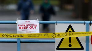 The outbreak was confirmed at a site in Preston