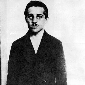 Assassin Gavrilo Princip, whose act sparked off the First World War, is the subject of a new book by Tim Butcher