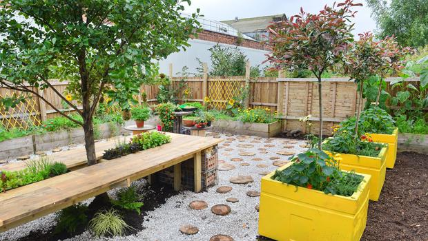 One of last year's projects with charity Young Saheliya , Glasgow, to green their 'grey' courtyard (RHS/Julie Howden/PA)