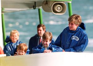 The Princess of Wales with her sons Princes Harry and William in 1991 (Martin Keene/PA)