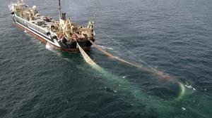 """Undated handout file photo issued by Greenpeace of the world's second largest factory fishing trawler, the Lithuanian FV Margiris. Brexit is a """"perfect opportunity"""" to take back control of British waters and oust """"monster"""" supertrawler ships for good, campaigners say."""