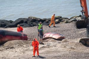 The removal operation begins after a 40ft-long whale washed up on the beach at Clacton-on-Sea in Essex. The giant marine mammal was swept to shore on Friday (Joe Giddens/PA)
