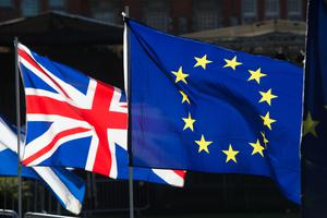 """Northern Ireland needs Brexit clarity from a government """"consumed"""" by the coronavirus emergency, the Belfast civil servant in charge of the country's preparations said. (Jonathan Brady/PA)"""