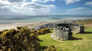 The view from Centenary Viewpoint on the gorse-covered hillside of Dinas Oleu in North Wales (John Miller/National Trust/PA)