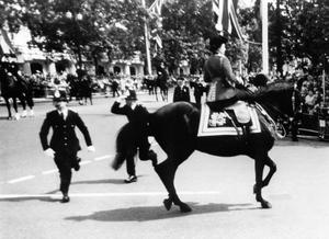 The Queen calms her horse Burmese while policeman spring to action after shots were heard as she rode down the Mall (PA)