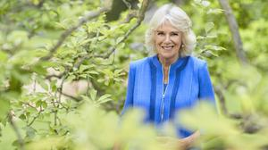 The Duchess of Cornwall photographed at Clarence House to mark her 73rd birthday (Chris Jackson/Getty Images)