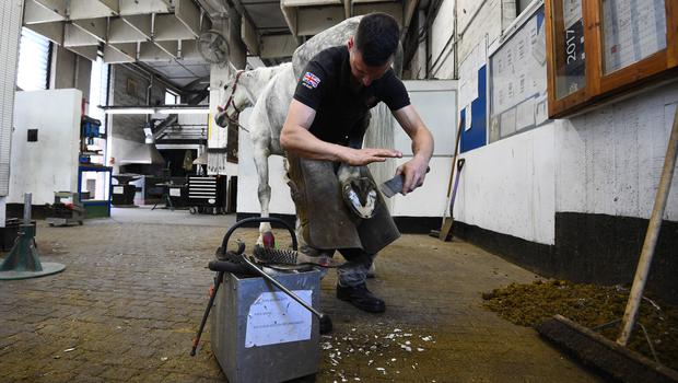 A horse being re-shoed in the forge at the barracks (Kirsty O'Connor/PA)