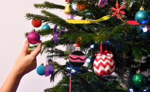 People who illegally dispose of their Christmas trees are being warned that they could face a hefty fine of up to £2,500. Stock photo