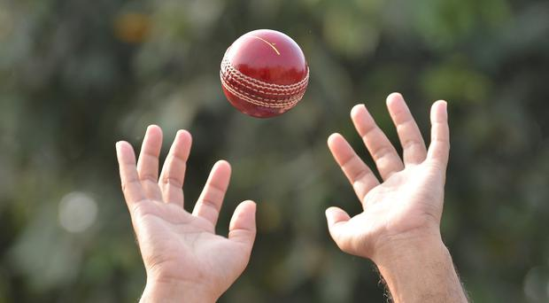 It was some catch (Suman Bhaumik/Getty Images)