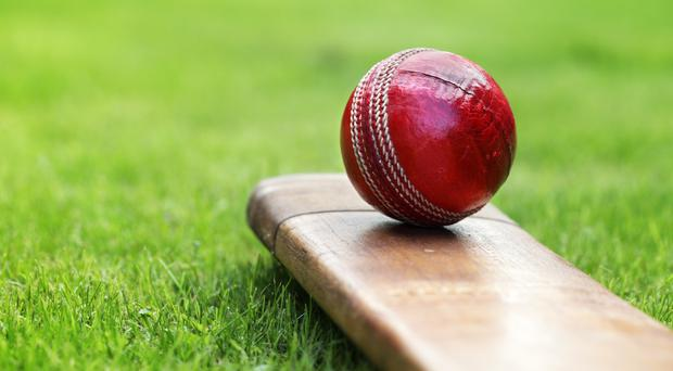 A cricket bat and cricket ball on the grass