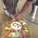 Blaze the horse tucks into a delicious meal (Omaha Police Department/PA)
