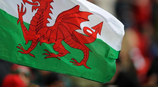 The Welsh FA are investigating comments made on BBC Wales.