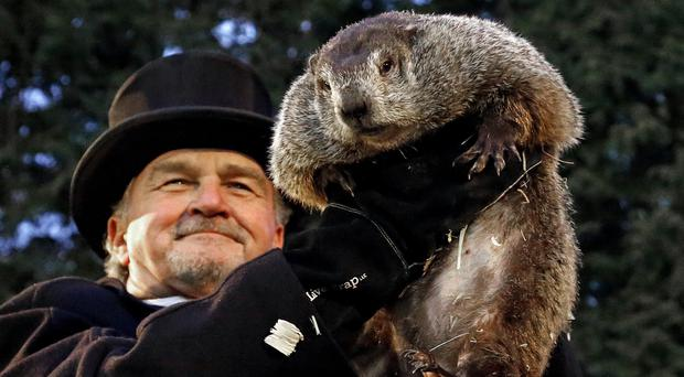 Groundhog Day 2018: Punxsutawney Phil sees his shadow