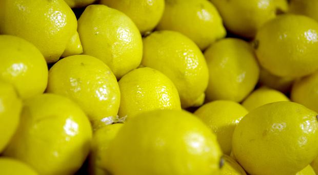A lemon craze may have given rise to the Sicilian Mafia in the 19th century, evidence uncovered by Northern Ireland academics suggests.