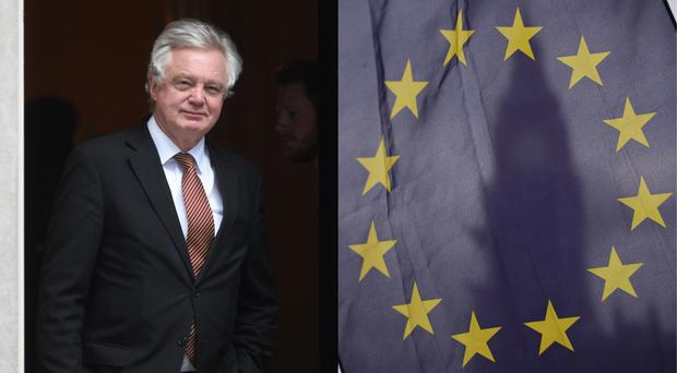 David Davis has been speaking to business leaders in Vienna (Victoria Jones and Yui Mok/PA)