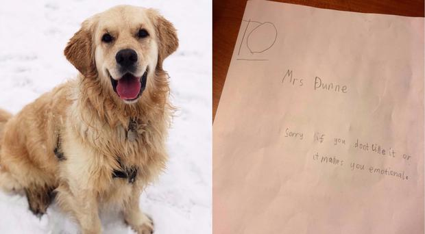 Charlie was the Dunne's family pet (@luciedunne_/PA)