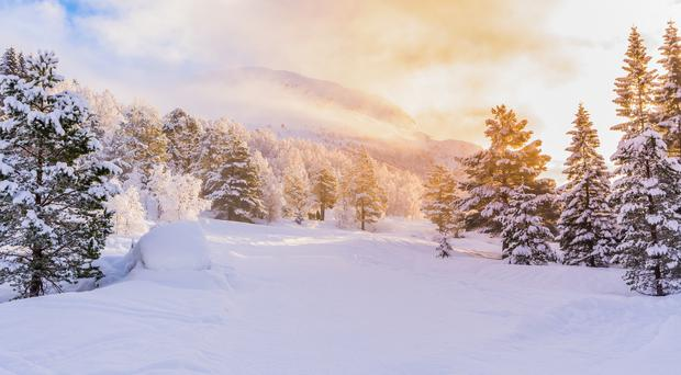 Snow scene (MarkusBeck/Getty Images)
