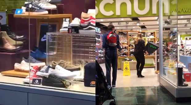 A screen grab from a @chriscough's Twitter video of a bird in a shoe shop
