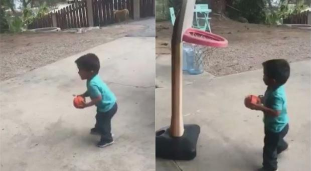 Two-year-old basketball player