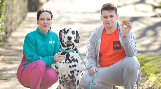 Pongo with owner Jack Harvey and PDSA vet Gemma Hepner (PDSA/PA)