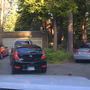 The bear escapes from the car ( El Dorado County Sheriff's Office/PA)