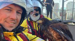 Cleo the hawk is rescued by RNLI lifeboat crew (RNLI)