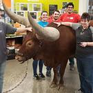 Staff pose with the steer bull in the Texas store (Shelly Lumpkin/Facebook)