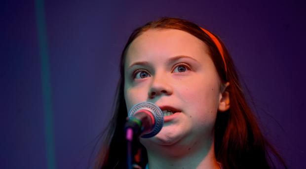 Greta Thunberg has had a tiny beetle named after her (Victoria Jones/PA)