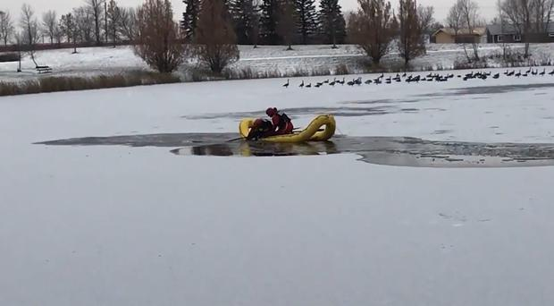 A dog is pulled from a frozen lake (City of Winnipeg)