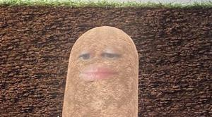 A company boss accidentally turned herself into a potato and couldn't switch it off (@PettyClegg)