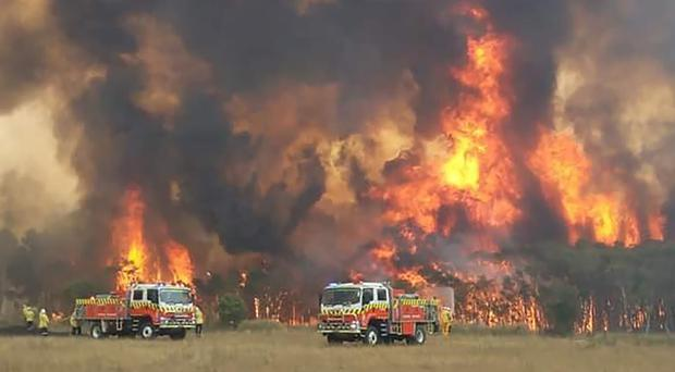 Firefighters work to protect homes around Charmhaven, New South Wales (NSW Rural Fire Service/AP/PA)