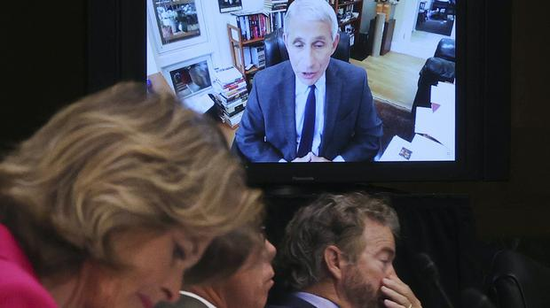 Senators listen as Dr. Anthony Fauci, director of the National Institute of Allergy and Infectious Diseases, speaks remotely (Win McNamee/AP)