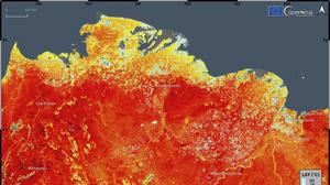 An image showing the land surface temperature in the Siberia region of Russia (ECMWF Copernicus Climate Change Service/AP)