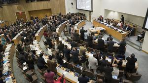 Delegates give a standing ovation after a vote by the conference to adopt a legally binding instrument to prohibit nuclear weapons (AP)