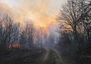 A forest fire burning near the village of Volodymyrivka, in the exclusion zone around the Chernobyl nuclear power plant, earlier in April (Yaroslav Yemelianenko/AP)