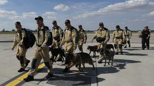 Members of the Czech search and rescue team and their service dogs walk to board a plane for Lebanon at the Vaclav Havel airport in Prague (Petr David Josek/AP)