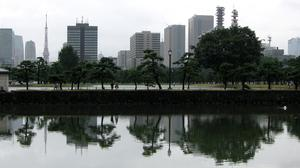 A protester has died after setting himself on fire in a Tokyo park