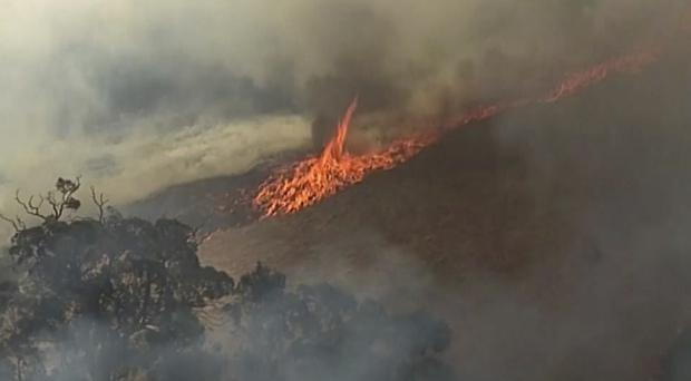 A fire burning in Birdwood, South Australia state (ABC/Channel 7/Channel 9/AP)