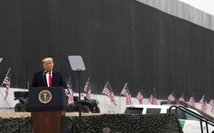 President Donald Trump speaks near a section of the US-Mexico border wall, in Alamo, Texas (Delcia Lopez/The Monitor/AP)