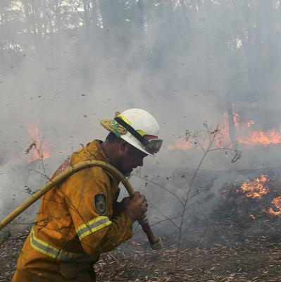 A firefighter pulls a hose through the bush as teams work to control flames near houses in Bilpin, 46 miles west of Sydney in Australia (AP)