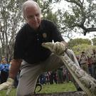 Miami Dade Mayor Carlos Gimenez captures a Burmese Python during the ceremony for the Florida Python Challenge 2020 Python Bowl (Joe Cavaretta/South Florida Sun-Sentinel via AP)