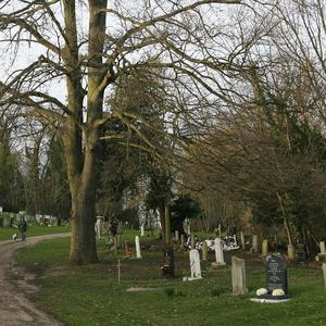 A Los Angeles cemetery has agreed to pay around £48m to settle 'body dumping' claims
