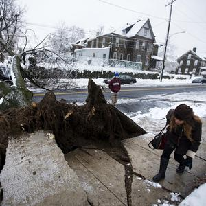 A woman ducks under a power line next to an ice-covered downed tree in Philadelphia (AP)