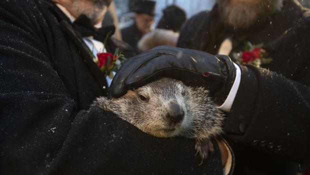 The groundhog was woken by the chanting of the crowd (Barry Reeger/AP)