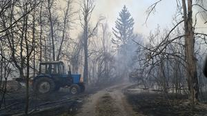 Chernobyl zone workers extinguish a forest fire burning near the village of Volodymyrivka at the start of April (Yaroslav Yemelianenko/AP)